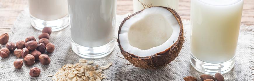 Milk-Header-Image