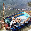 dittisham-ferry